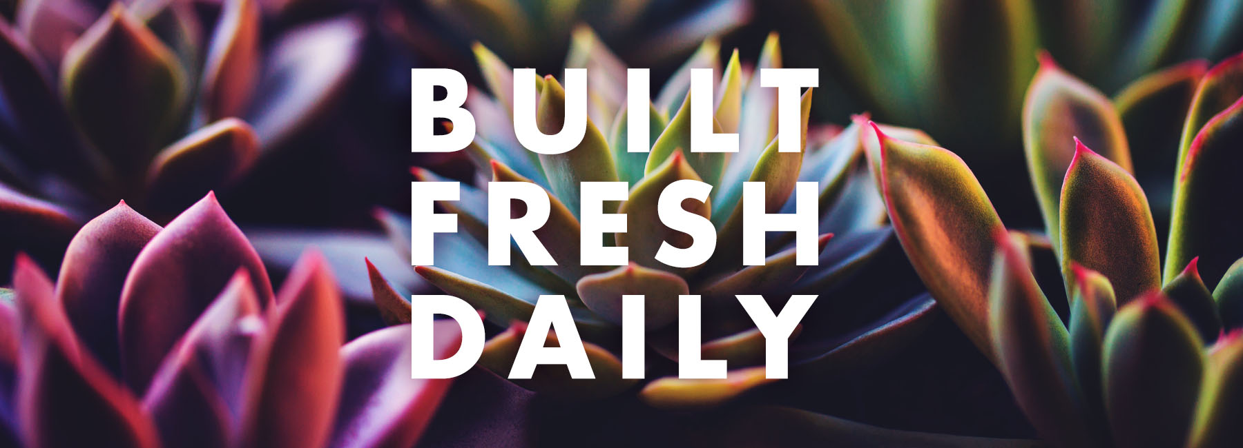 built fresh daily