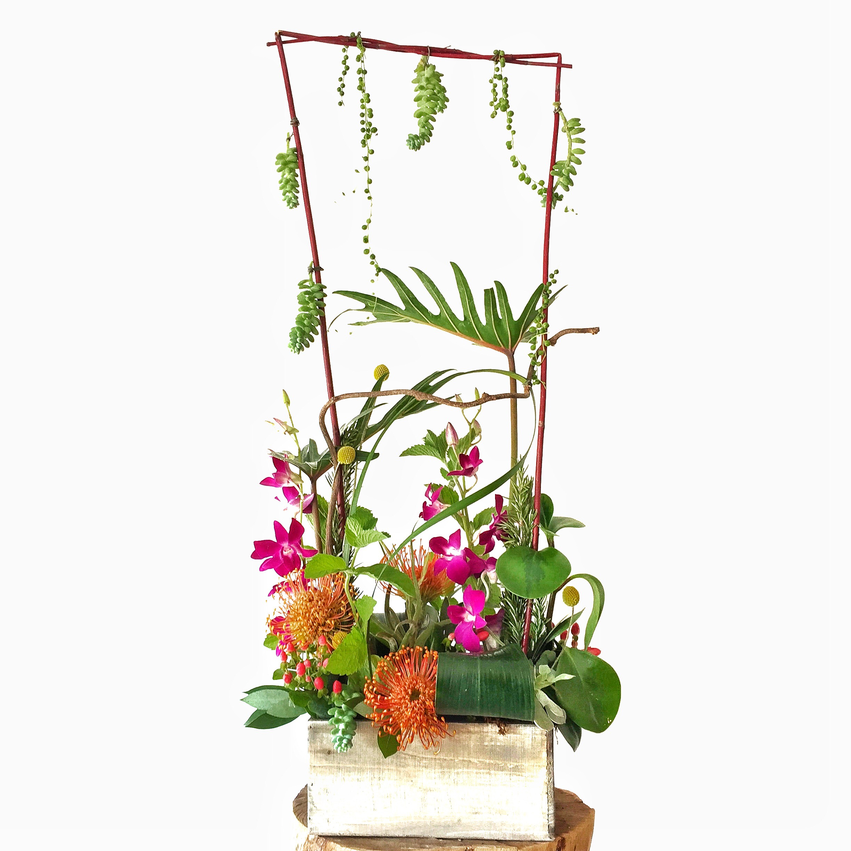 Beards Floral Design • Wichita Florist
